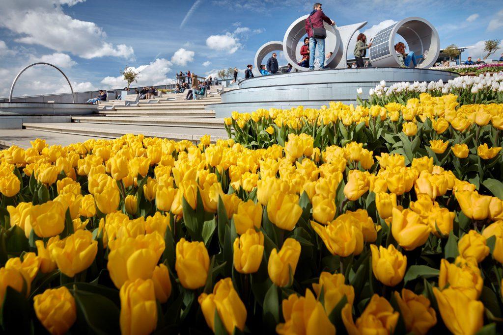 10x leuk dagje uit in de meivakantie, Tulp Festival op dak van NEMO
